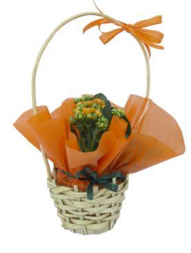 Кошница с каланхое - оранжево
