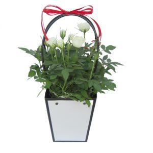 Чанта с рози - бели