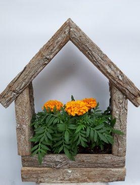 Къщичка с тагетиси